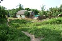 CHIMICHAGUA